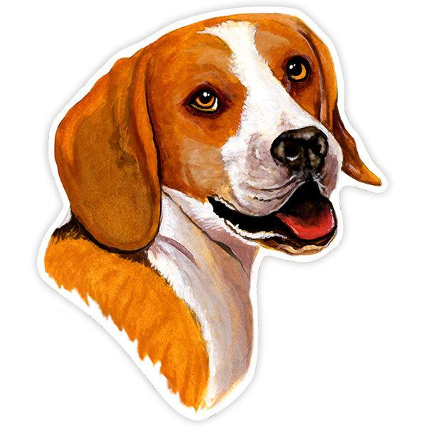 Aufkleber: Beagle