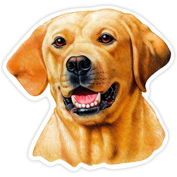 Aufkleber: Yellow Labrador Retriever
