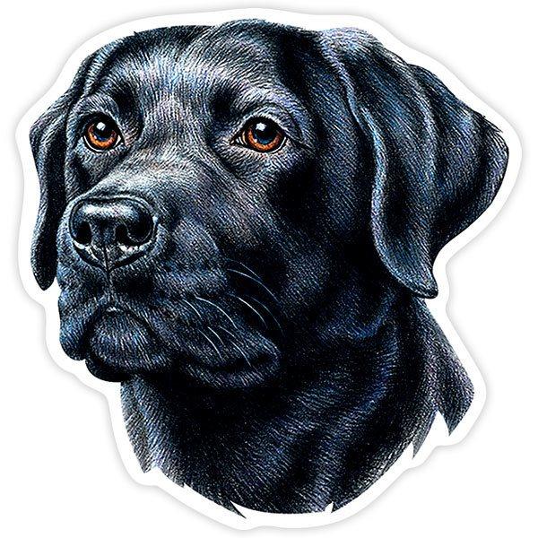 Aufkleber: Black Labrador Retriever
