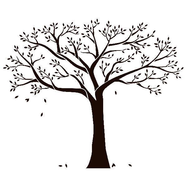 Wandtattoos: Stammbaum