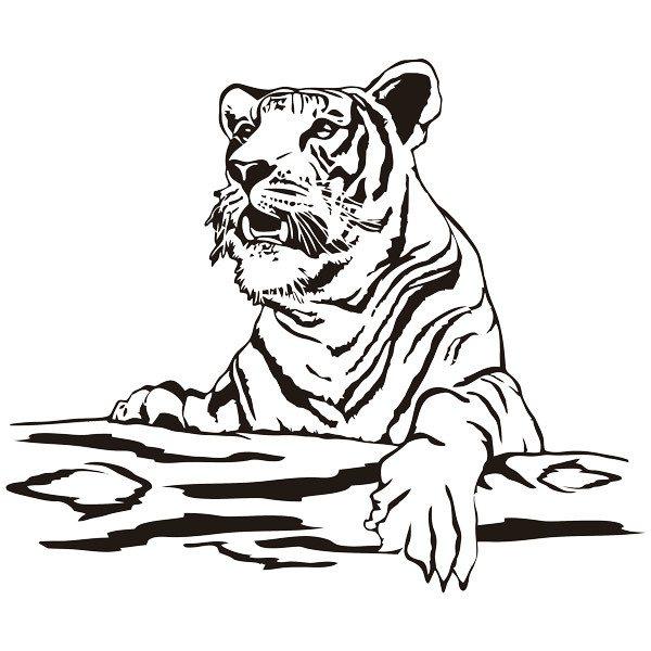 Wandtattoos: Tiger auf einem Protokoll
