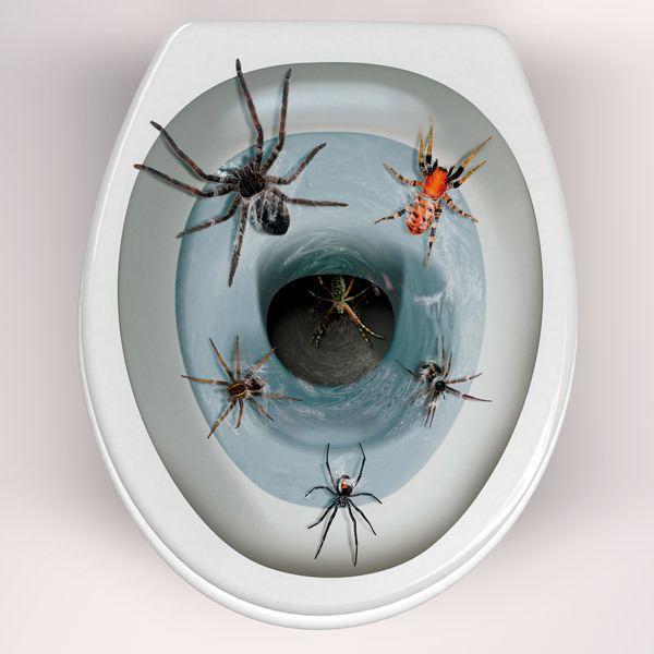 Wandtattoos: Spinnen kommen aus der Toilettenschüssel