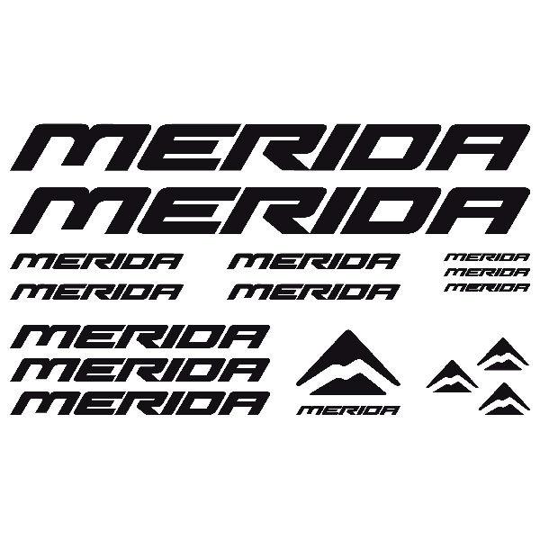 Aufkleber: Kit Fahrrad Mountainbike MTB Merida 2