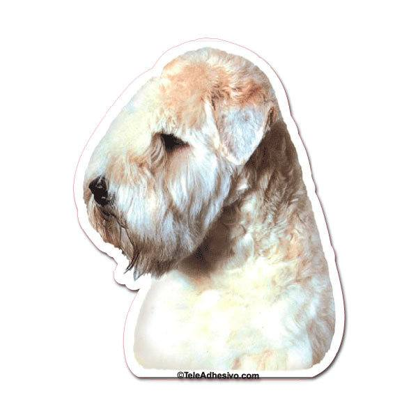 Aufkleber: Soft Coated Wheaten Terrier