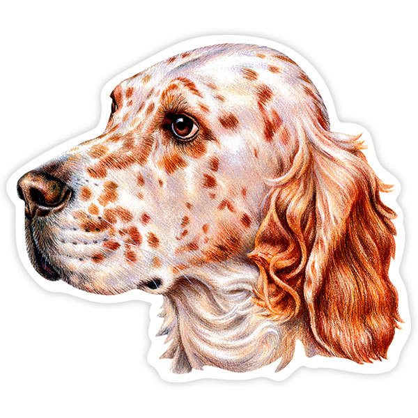 Aufkleber: English Setter