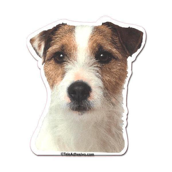 Aufkleber: Parson Russell Terrier