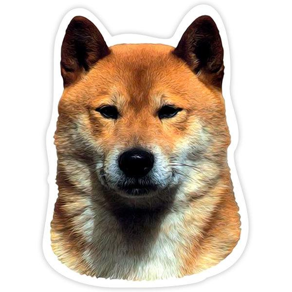 Aufkleber: Shiba Inu