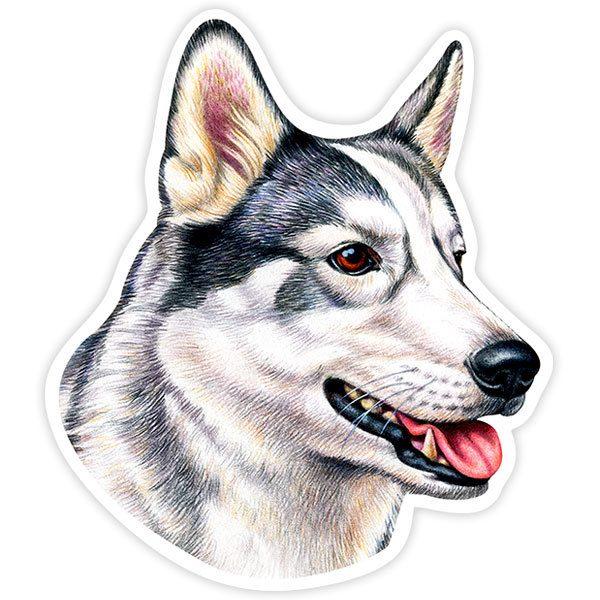 Aufkleber: Siberian Husky