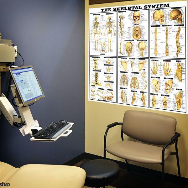 Wandtattoos: Die Skelett-Systems