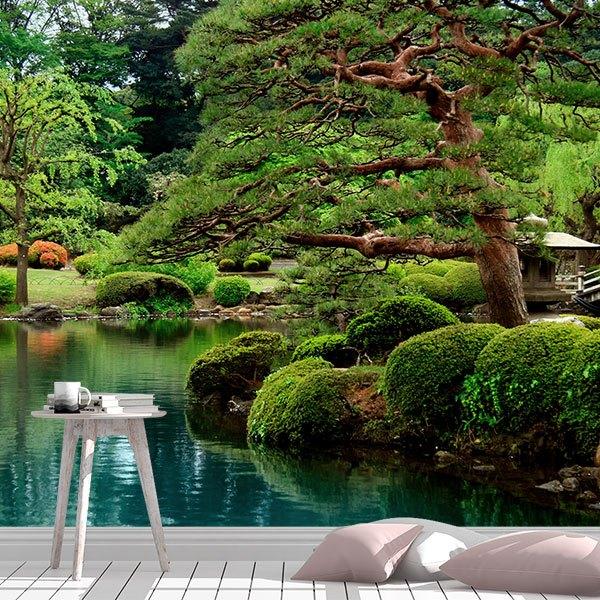 Fototapeten: Jardin japonés 0
