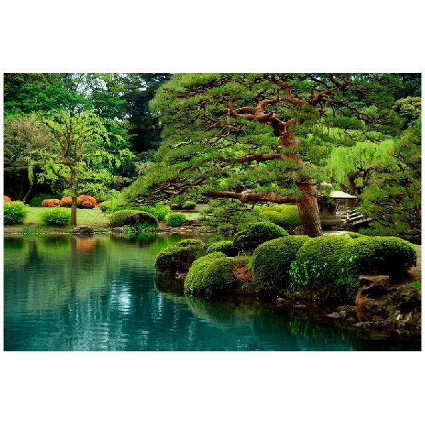 Fototapeten: Jardin japonés