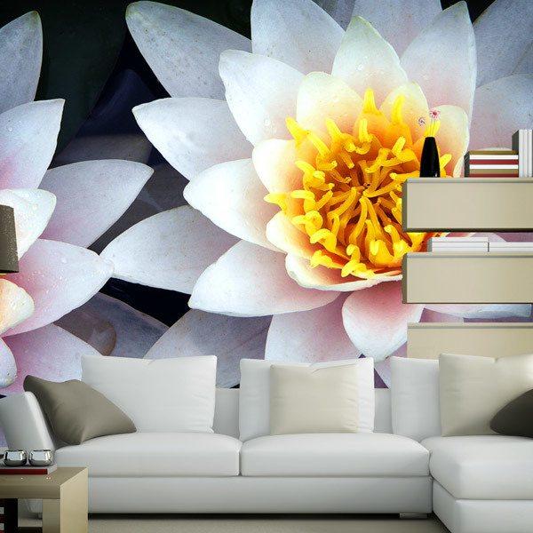 Fototapeten: Lotus-Blumen