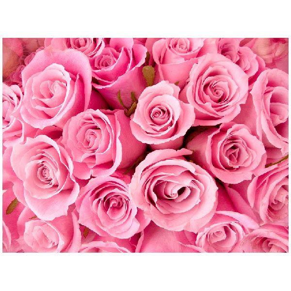 Fototapeten: Blumen 18