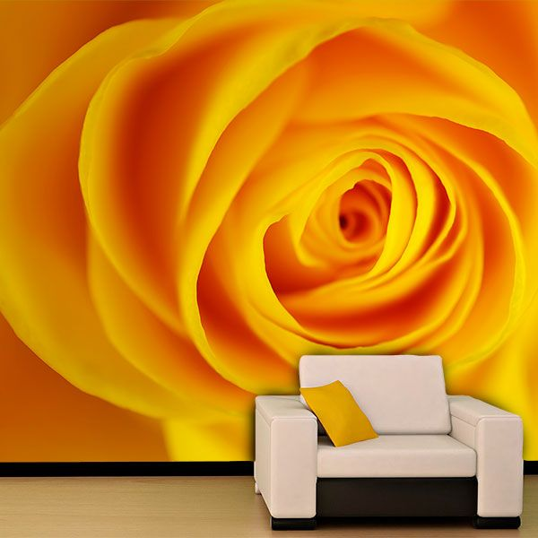 Fototapeten: Gelbe Rose 0