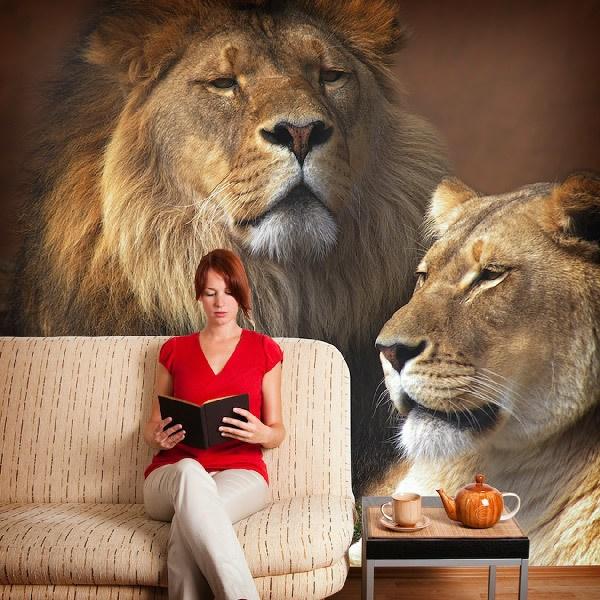 Fototapeten: Lion und Löwin 0