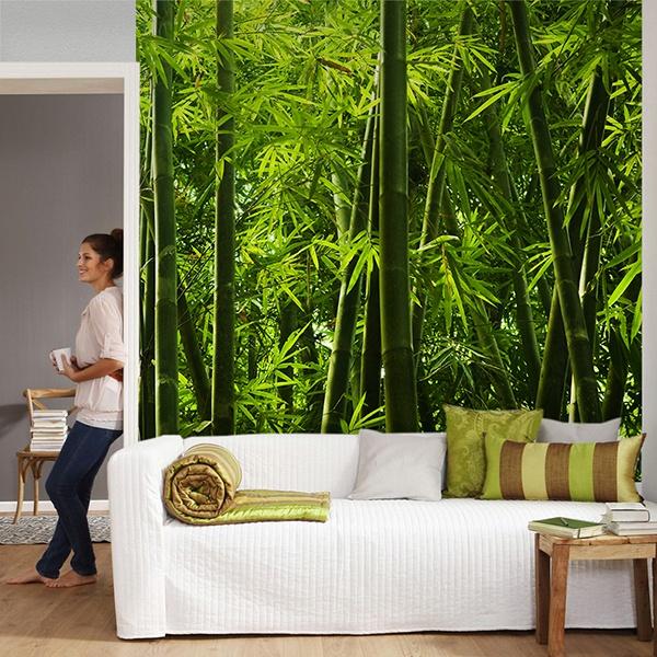 Fototapeten: Bambus