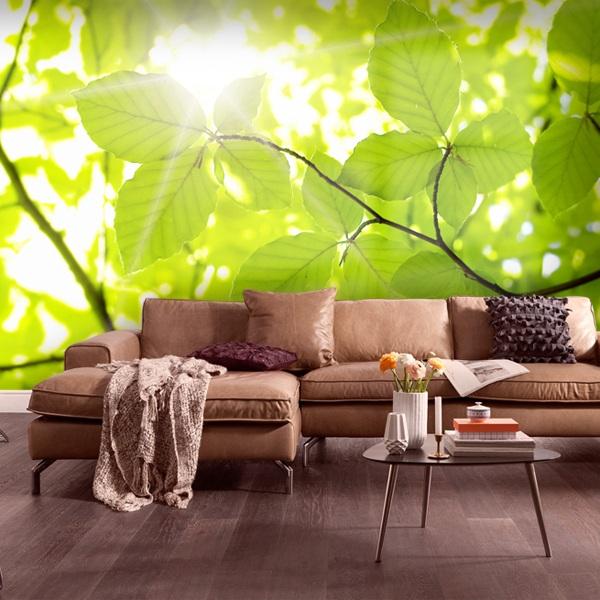 Fototapeten: Leaves 0