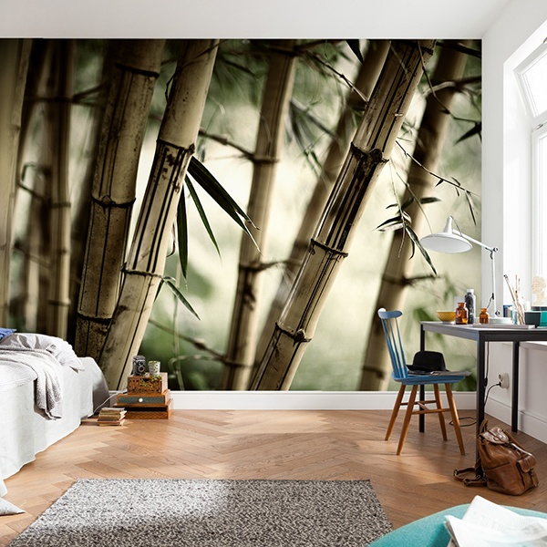 Fototapeten: Bambus-Weiß