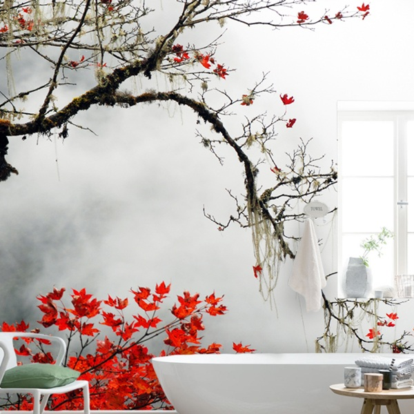 japanischer ahorn. Black Bedroom Furniture Sets. Home Design Ideas