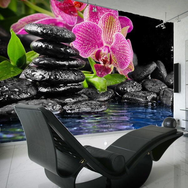 Fototapeten: Orchid und Basalt 0
