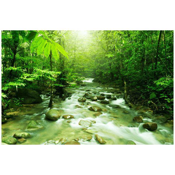Fototapeten: Dschungelfluss