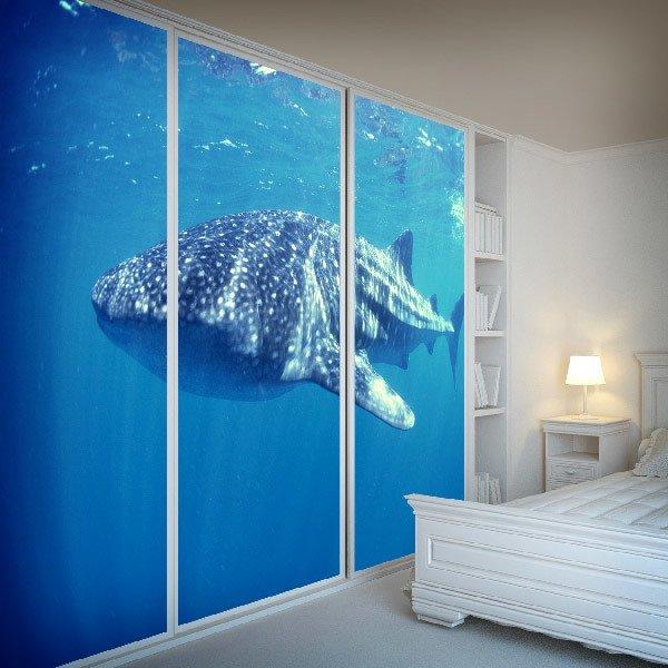 Fototapeten: Whale Shark 0