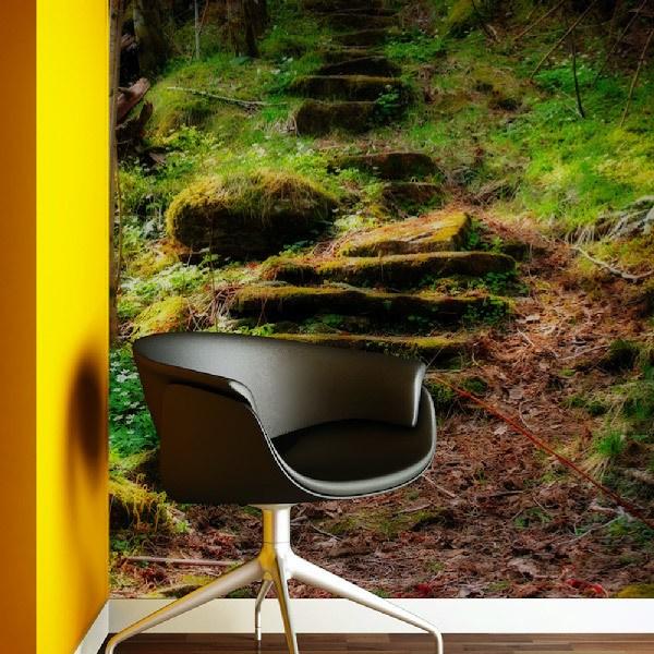 Fototapeten: Wald Treppen  0