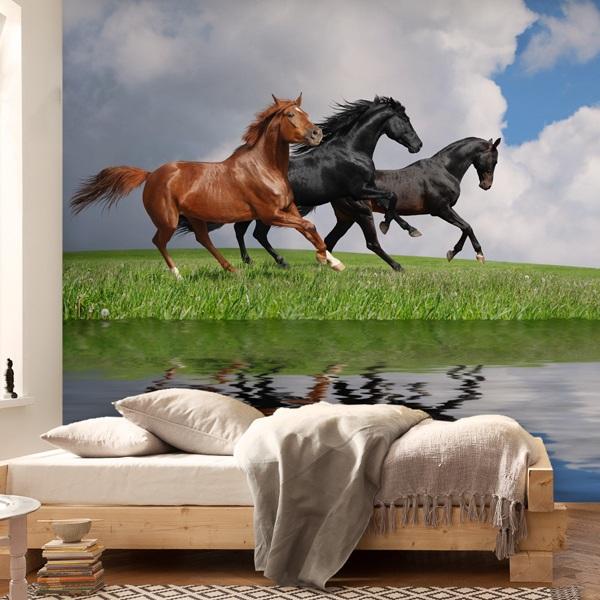 Fototapeten: Pferde und wasser 0