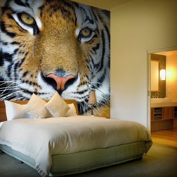 Fototapeten: Tiger 0
