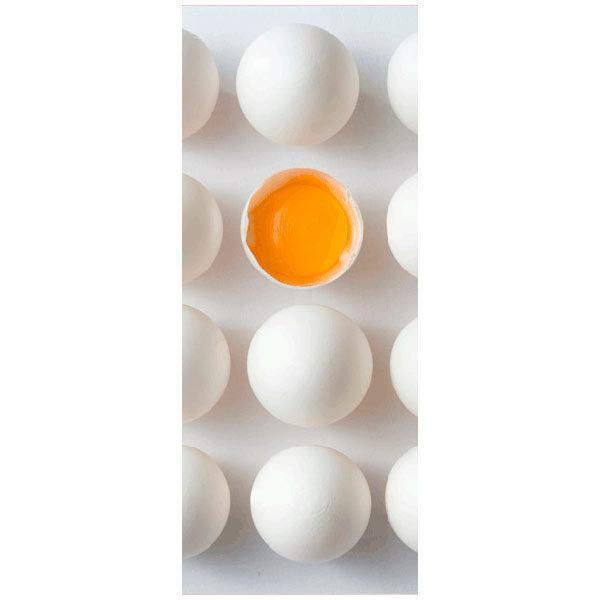 Wandtattoos: eggs
