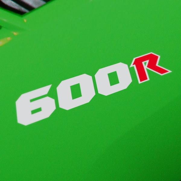 Aufkleber: GPZ600R, 600R