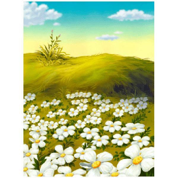 Wandtattoos: Blumen in der grünen Wiese
