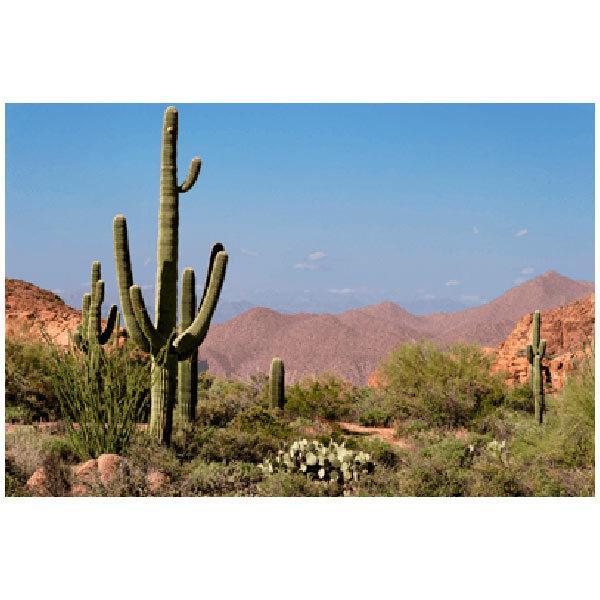 Wandtattoos: Desert