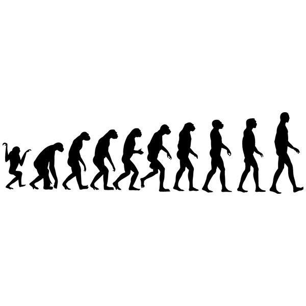 Wandtattoos: Evolution