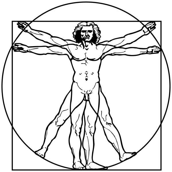 Wandtattoos: Da Vinci