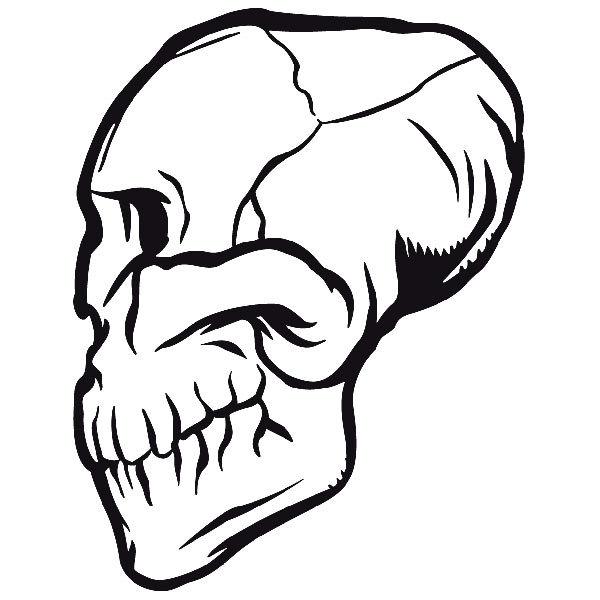 Aufkleber: skull20