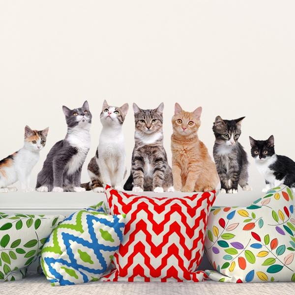 Wandtattoo katzen - Katzen wandtattoo ...