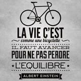 Wandtattoos: La vie c est comme une bicyclette 3
