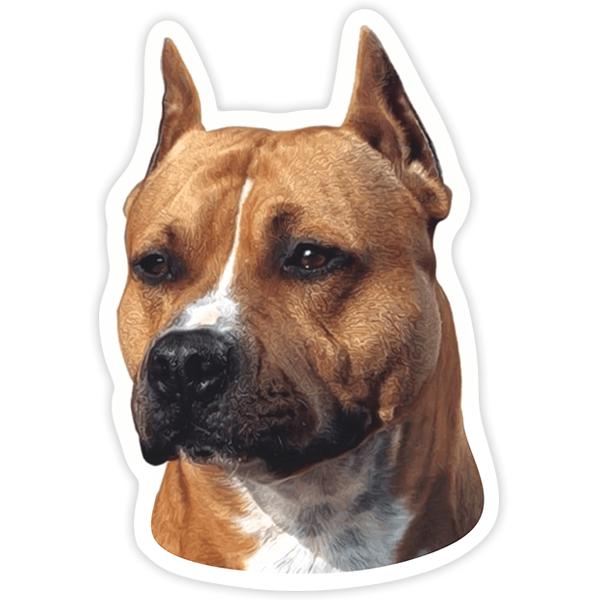 Aufkleber: American Staffordshire Terrier