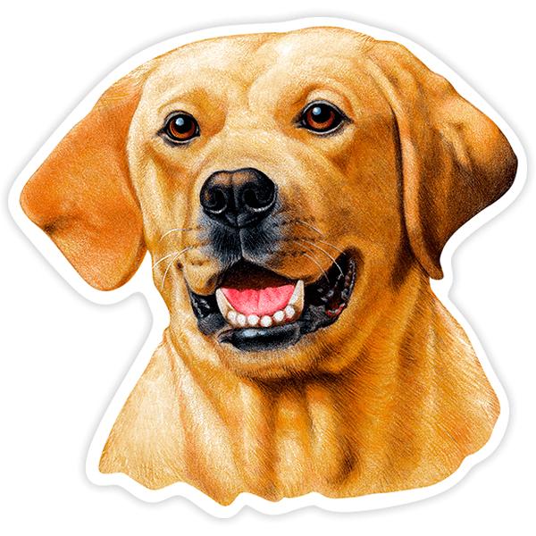 Aufkleber: Yellow Labrador Retriever