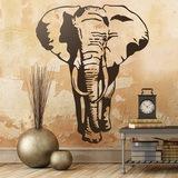 Wandtattoos: Elefant 0