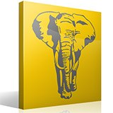 Wandtattoos: Elefant 2