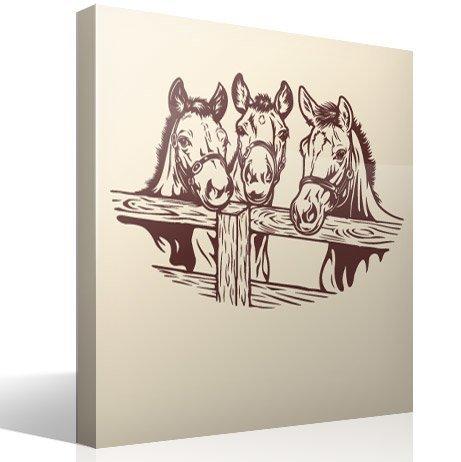 Wandtattoos: 3 Pferde