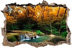 Wandtattoos: Loch Frühling im Wald 3