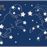 Wandtattoos: Bordüre Sterne 4