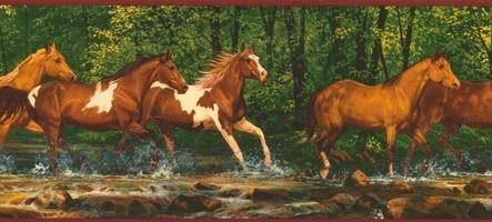 Bordüre Pferde
