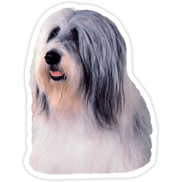 Aufkleber: Bearded Collie