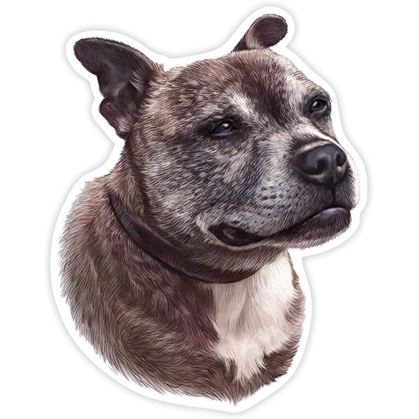 Aufkleber: Staffordshire Bull Terrier