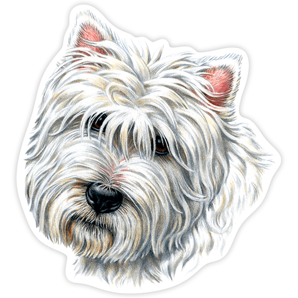 Aufkleber: West Highland Terrier 1