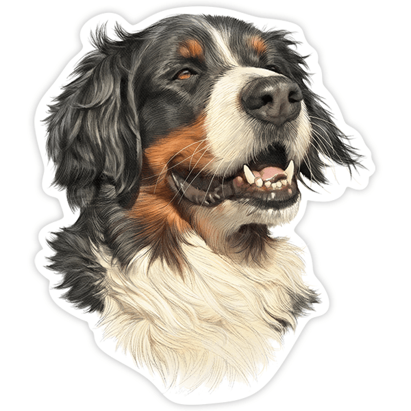 Aufkleber: Bernese Mountain Dog
